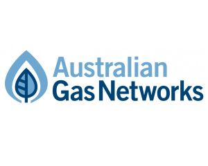 NSW Distribution Network Acquisition